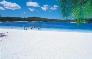 Fraser Island Lake McKenzie with Fraser island adventure tours