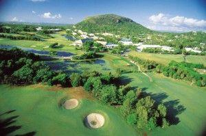 Golf at Coolum